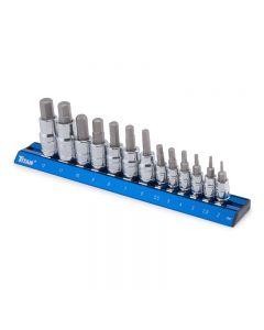Titan 16124 Professional Metric Hex Bit 13-Piece Socket Set with Socket Rail