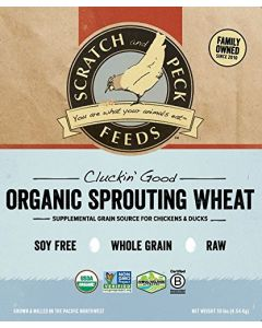 Scratch and Peck Feeds 8100-10 Cluckin' Good Organic Sprouting Wheat - 10-lbs